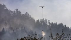 إلى غاية 19 يونيو حزيران، تم تسجيل 168 حريقًا غابات في جميع أنحاء المقاطعة ، أقل بكثير من متوسط الـ287 حريقًا في نفس التاريخ منذ عام 2010 - RADIO-CANADA / BEN NELMS