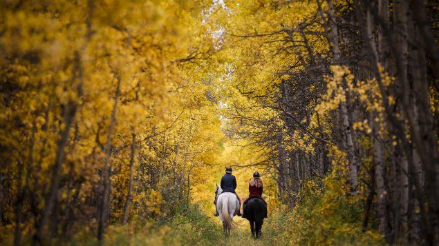 خريف كندا مميّز بطبيعته الساحرة الغنيّة بألف لون ولون/Jeff McIntosh/CP