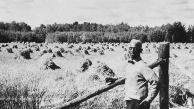 مزارع في حقل مزروع بالحبوب في أمبر فاليه في مقاطعة ألبرتا/Glenbow Archives