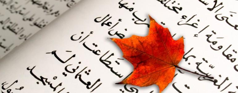 feuille d'érable posée sur un texte en arabe