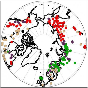 A recent study gathered data on tree rings from across the Arctic. In this figure, green and purple dots indicate cloudiness that is cloudier than the average Arctic station. The red and purple dots indicate temperatures that are colder than the average Arctic station during the growing season. (Courtesy Zan Stine)