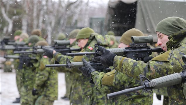 Canadian And Ukrainian Soldiers Learn From Each Other S