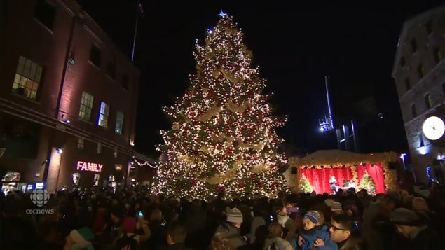 Montreal's Big, Ugly Christmas Tree