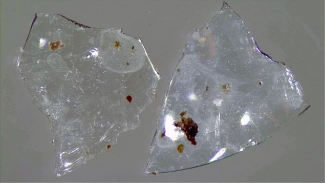 How flushed contact lenses add to microplastic pollution in waterways