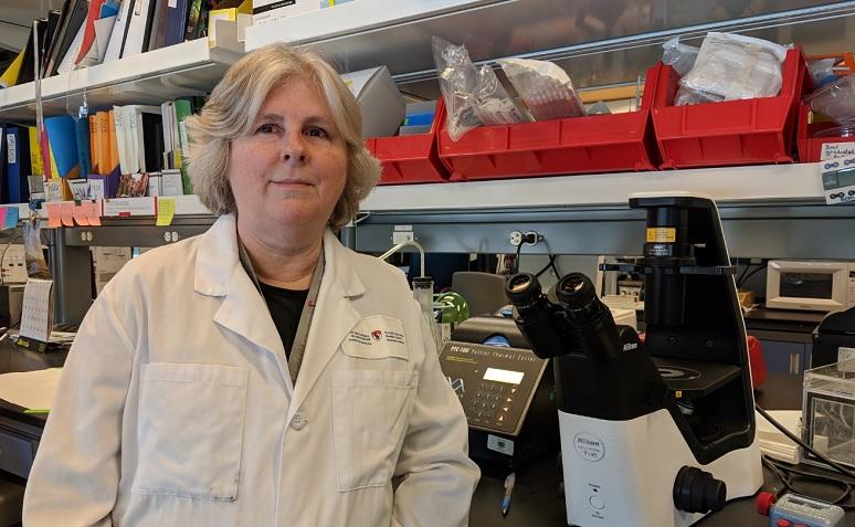 McGill University professor Nicole Bernard (PhD) is also a scientific researcher at the Research Institute-McGill University Health Centre (MUHC)