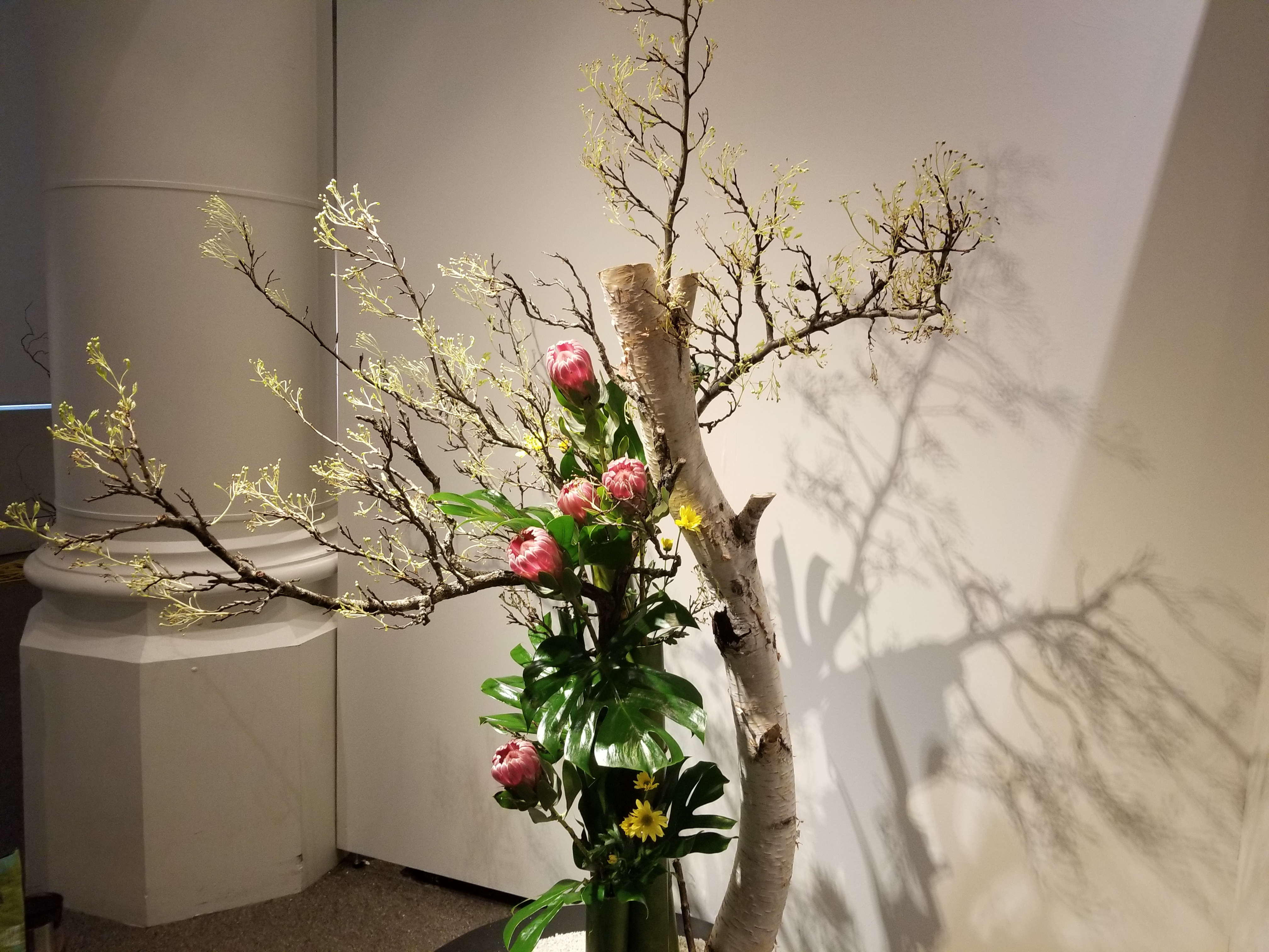 L Ikebana Pas À Pas japanese flower art heralds spring at museum – rci | english