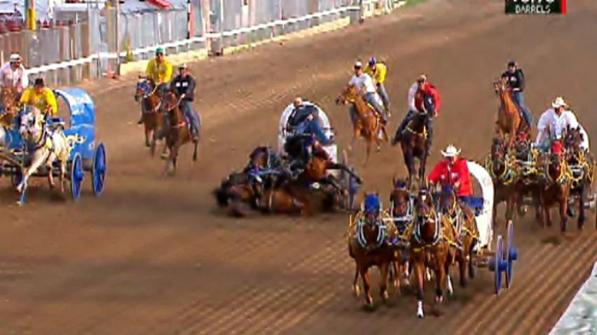 Calgary Stampede S Chuckwagon Races Claim Lives Of Six Horses