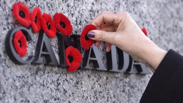 Remembrance Day: Honouring the Canadian fallen