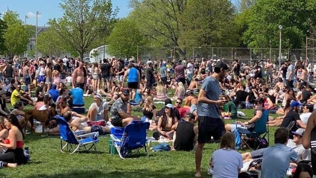 Toronto mayor apologizes after crowds flood downtown park