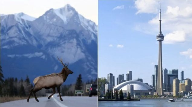 Ottawa funding plan to attract more tourists: they're called Canadians