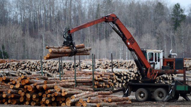 Canada 'disappointed' with U.S. decision to appeal WTO softwood lumber report