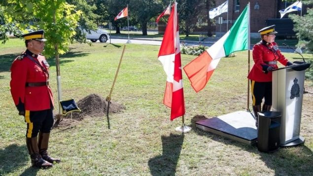 Italian-Canadian community will receive a formal apology in May for WW2 wrongs
