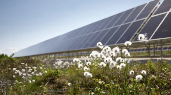 Another Yukon community lines up for solar power in northwestern Canada