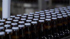 Des bouteilles de bière Molson alignées sur une chaîne de production.