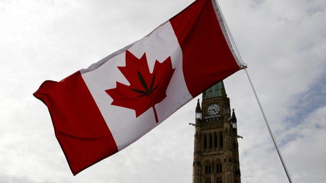 Senado de Canadá aprueba ley que legaliza la marihuana con fines recreativos
