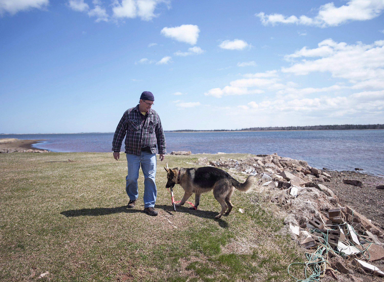 Dave Haley y un perro de barrio pasean a lo largo de la orilla en Lennox Island, P.E.I. el lunes, 25 de abril de 2016. El aumento del nivel del mar y la erosión costera amenazan a la comunidad Mi'Kmaq, que ha sufrido una importante pérdida de masa terrestre en los últimos 50 años. ©The Canadian Press/Andrew Vaughan