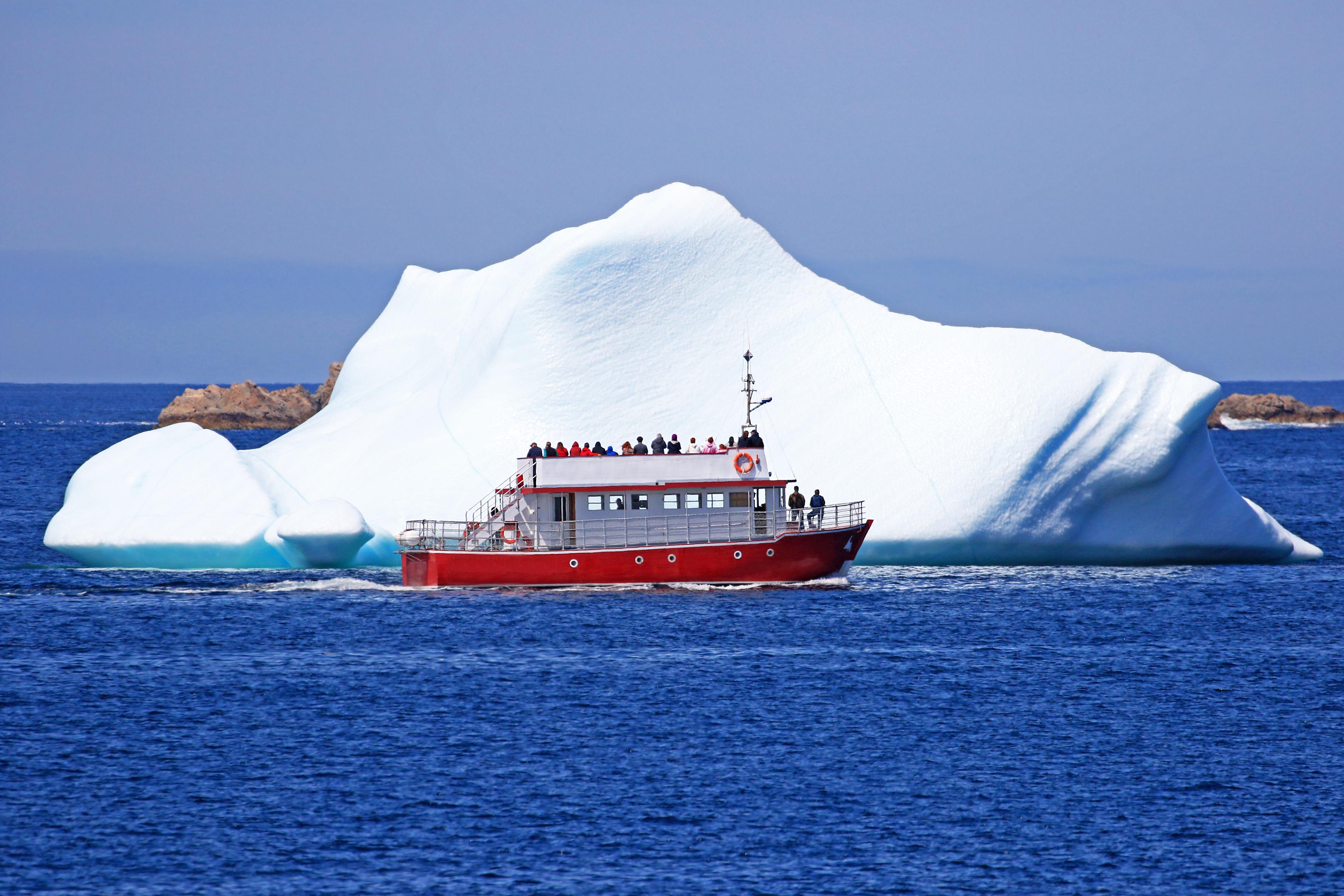 istock birdimage - Los icebergs llegan a Canadá y atraen a turistas de todo el mundo