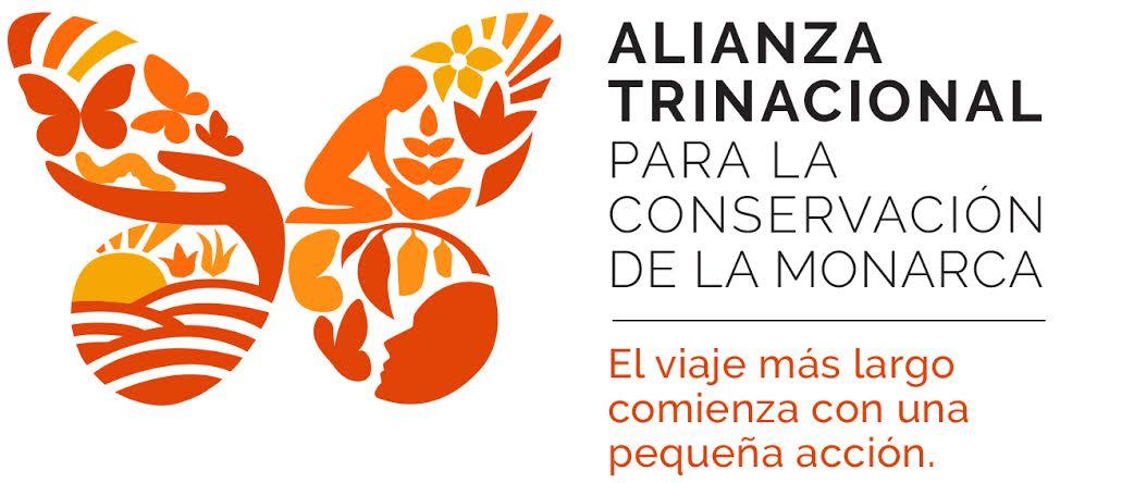 La Comisión Para La Cooperación Ambiental Y Las Mariposas