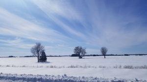 Canadá: una evocación de lugares   Episodio 6 - William Ormond Mitchell bajo los cielos de las Praderas