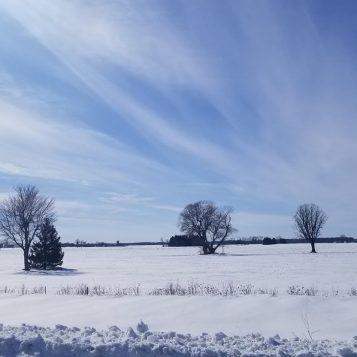 Canadá: una evocación de lugares | Episodio 6 - William Ormond Mitchell bajo los cielos de las Praderas