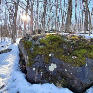 Canadá: una evocación de lugares | Episodio 5 - Al Purdy, el vecino de Ameliasburgh
