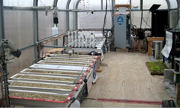 100827-mars-greenhouse-interior