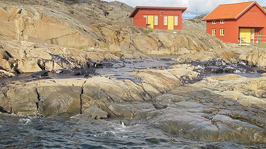 Oil has washed 25 to 50 meters inland in some places. Photo: Kustbevakningen. Radio Sweden.