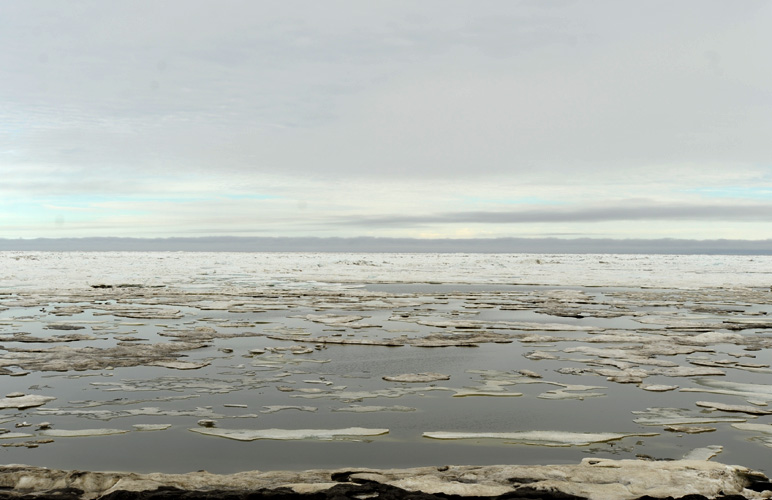 View of Arctic Ocean from Barrow. Photo: Stephen Nowers