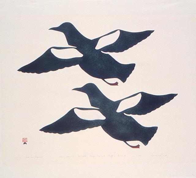 Two Sea Pigeons (1959) by Kananginak Pootoogook. Image courtesy of Dorset Fine Arts.
