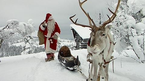 finland s reindeer help fight climate change eye on the. Black Bedroom Furniture Sets. Home Design Ideas