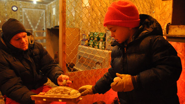 Dave Halpine and his son Aaron, 7, check out some of the eggs their chickens produced on their Inuvik, N.W.T., farm. (Allison Devereaux/CBC)