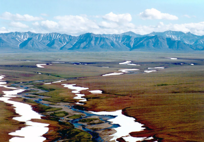 Alaskan tundra in summer – very boggy. U.S. Fish & Wildlife Service.