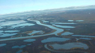 Reindeer-grazing reserves near the communities of Inuvik and Tuktoyaktuk in the Mackenzie Delta could be open to bidding by companies who want to explore for oil and gas. (CBC)