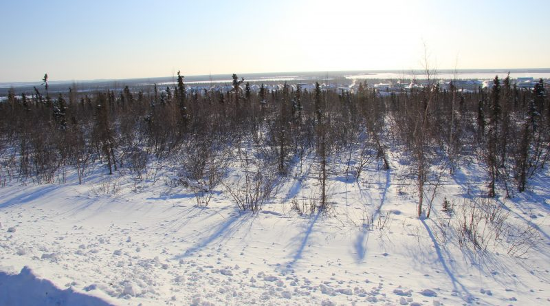 View from road near the Arctic community of Inuvik in Canada's Northwest Territories. (Eilís Quinn / Eye on the Arctic)