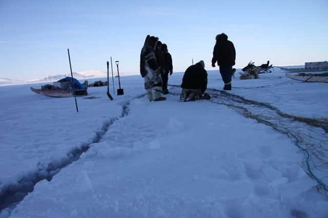Inuit hunters prepare to set up a seal net in a crack between two sea ice plates. Photo by Levon Sevunts.