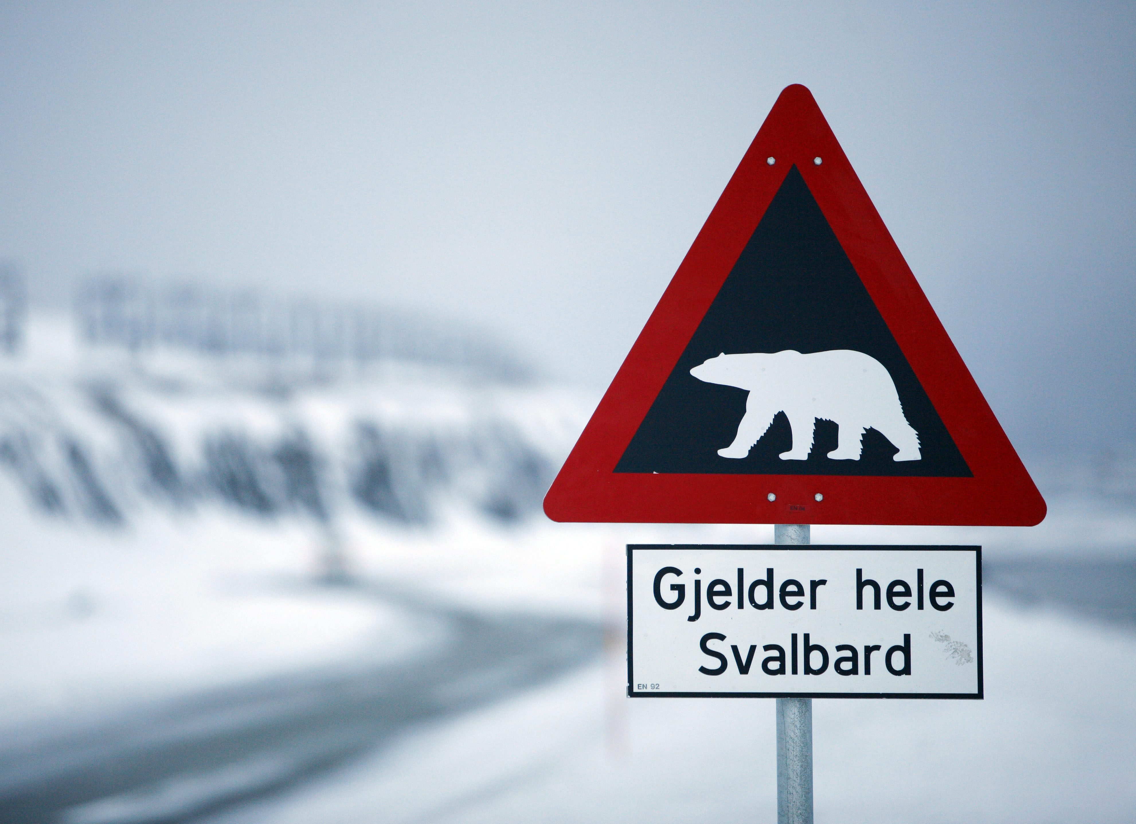 A sign warning of polar bears outside of Longyearbyen, the main settlement in Norway's Arctic archipelago of Svalbard. (John McConnico / AP Photo)