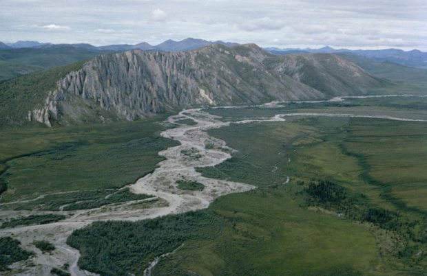 (Firth River in the Arctic National Wildlife Refuge. Some scientists expect tree and shrub growth to migrate north over the next half-century. (U.S. Fish and Wildlife Service / Alaska Dispatch)