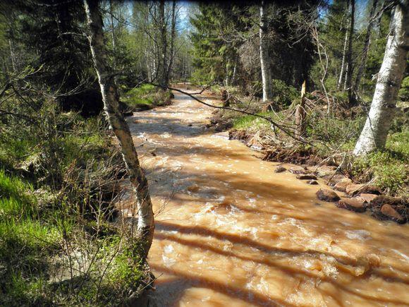 The Lumijoki as seen on Tuesday. ( Pekka Rönkkö / Kainuun luonnonsuojelupiiri)