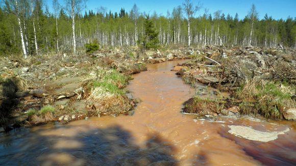 A view of the river downstream from the mine. (Pekka Rönkkö / Kainuun luonnonsuojelupiiri)