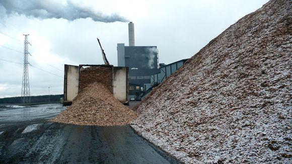 Wood waiting to be burned outside the Keljonlahti power plant in Jyväskylä. (Mika Rinne, Yle)