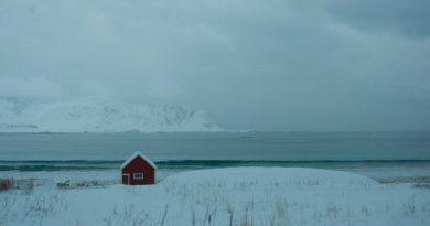 The Arctic – somebody's home. (c) Mia Bennett