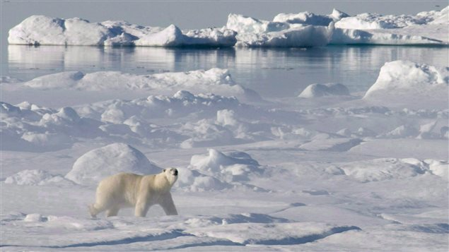 National security, stewardship, and international cooperation are stressed in the new U.S. Arctic strategy document. (Jonathan Hayward, The Canadian Press)