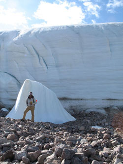 The plants had been buried during the Little Ice Age under the Ellesmere Island's Teardrop Glacier, shown with graduate student David Wilkie for scale. (Catherine La Farge/University of Alberta)