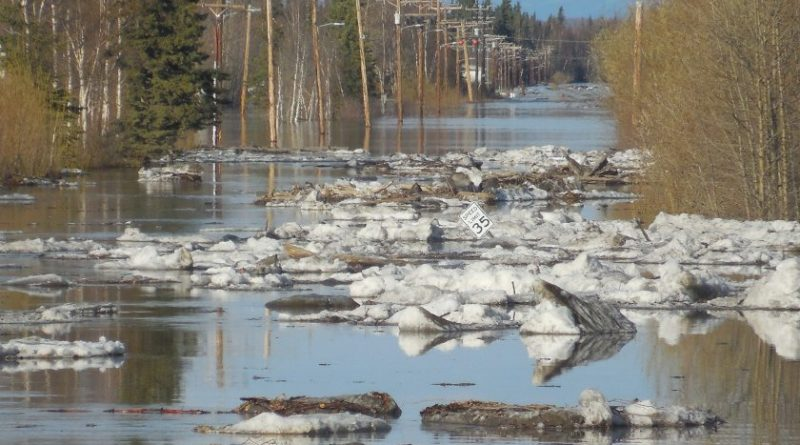Flooding in the Yukon River community of Galena, Alaska over the memorial Day weekend. (National Weather Service, Alaska Dispatch)