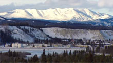 A recent commercial advertising Whitehorse City Council meetings had gone viral. Who says small town life is dull? (CBC)