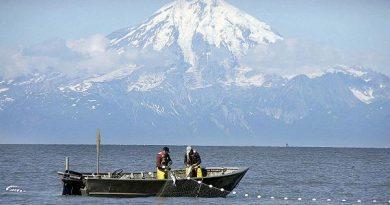 Clam Gulch, Alaska. (File / Al Grillo / AP)