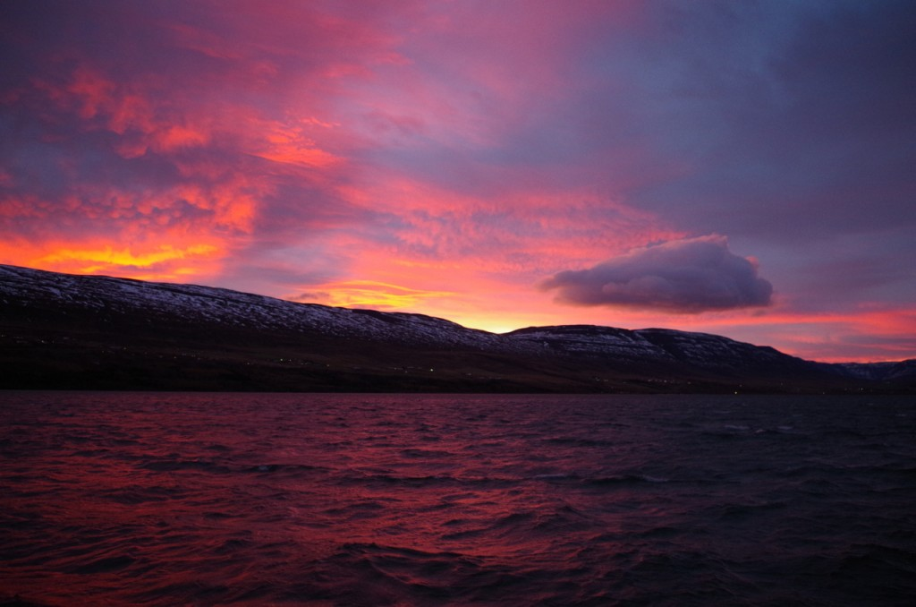 Conferences might require you to get up early, but at least in Akureyri, the benefit is of seeing otherworldly polar sunrises. (Mia Bennett)