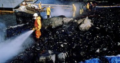 Spill workers hose a beach down after a Corexit oil dispersant test in the wake of the Exxon Valdez spill. (Courtesy Alaska State Archives / Alaska Dispatch)