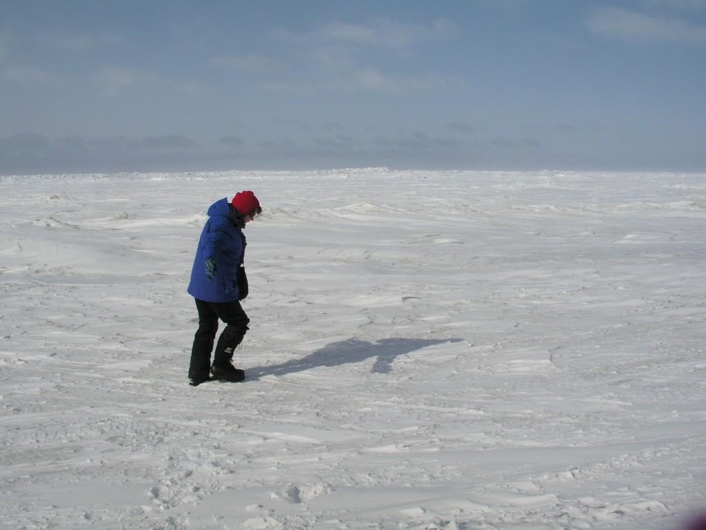 Walking on thin ice, Chukchi Sea, Alaska, 2008 (Irene Quaile)