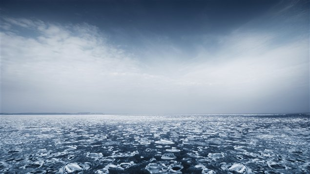 What is the future of Arctic fishing? (iStock)